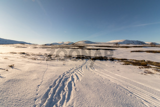 Ski tracks in mountain landscape Norway national park Dovre