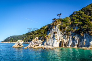 Creek in Abel Tasman National Park, New Zealand