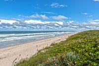 Strand am Canaveral National Seashore Cape Canaveral Florida