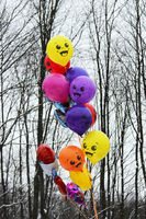 Colorful balloons on a background of black and white trees at the Shrovetide festival of 2018. Russia.