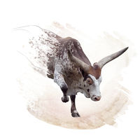 brown and white longhorn steer watercolor