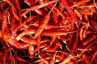 dried hot red pepper