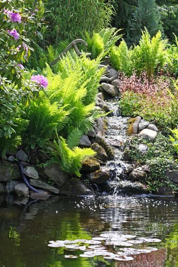 Gartenteich mit wasserfall - Wasserfall gartenteich ...