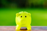 Green piggy bank ecological concept for saving, accounting, banking and business account