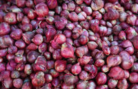 Stock Of Red Onion Bundles On Sale In The Market