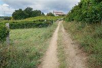 Jakobsweg zwischen Pontevedra und Caldas de Reis, Spanien