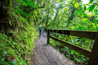 Hike in Costa Rica