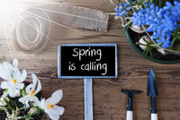 Sunny Flowers, Sign, Text Spring Is Calling