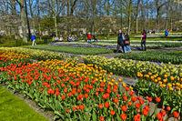 Parkanlage in der Blumenschau Keukenhof, Lisse, Niederlande