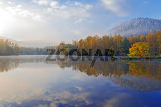 Am Rehlinger Weiher mit Weide auf Halbinsel im Herbst
