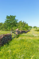 Flowering summer meadow with a stone wall and a gate in the countryside