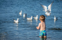 Little caucasian boy feeding seagulls