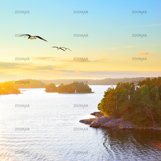 Scandinavian landscape at sundown
