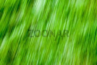 Naturgrafik