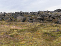 Lavafeld am aktiven Vulkan Leirhnjúkur in Island