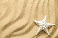 Summer, Sand Background with Starfish
