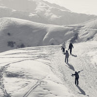 Skiers and snowboarders on snow road at sun winter morning