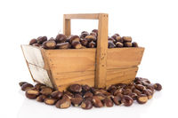 Sweet chestnuts isolated over white background