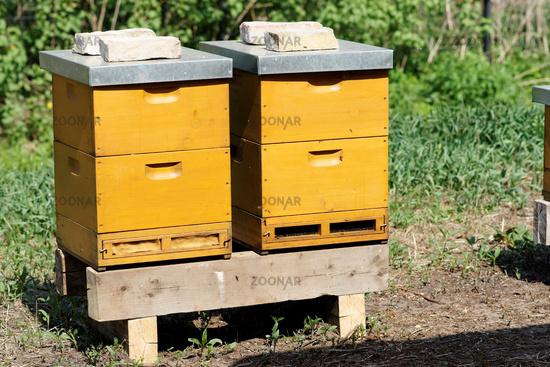 Bienenkästen kaufen