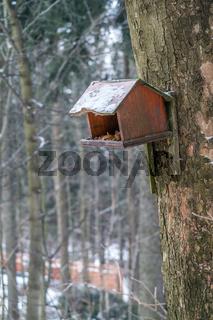 Wooden bird feeder in the forest