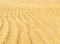 Sand Ripple Background