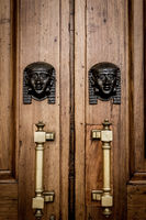 Sphinx heads entrance on wooden door