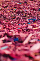 Textured background decorative colored sawdust for finishing flowerbeds in the winter season. Red and maroon sawdust
