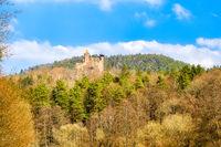 Castle Berwartstein in palatine forest