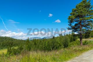 Landschaft in Jotunheimen-28