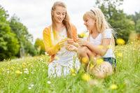 Frau als Mutter und Mädchen pflücken Blumen