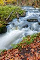 Autumn, fall wild river Doubrava, picturesque landscape.