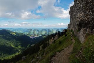 Ausblick auf das Alpenvorland vom Bärenköpfle