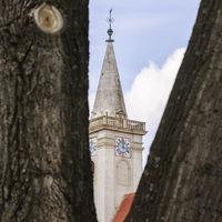 Kirche von Rust im Burgenland mit Baum im Vordergrund