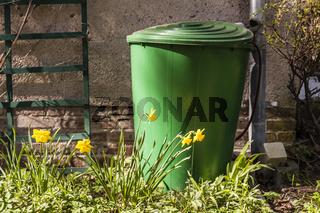Regentonne im Garten, rain barrel in a garden