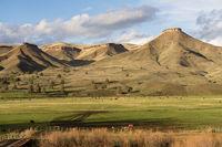 Ranch Livestock Dayville Grants County Route 26 Flat Top Ridge Oregon