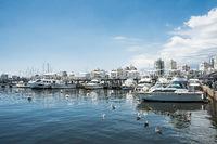 Yachts of the rich people in Punta del Este harbor, Uruguay