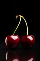 Two juicy fresh cherries on black background