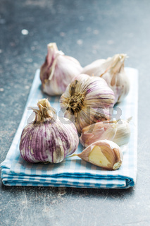 The fresh garlic.
