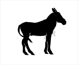 Silhouette of a mule