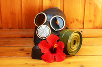 black old gas mask and red flower hibiscus on a wooden background.