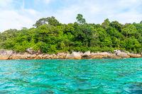 Wild green tropical sea stone coast