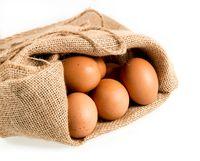 Freshly laid organic eggs in burlap sack isolated