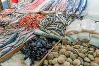 Fisch und Meeresfrüchte auf dem Mercado Central in Santiago