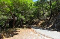 Straße in den Bergen, Zypern