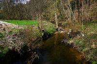 Schaichtal; Naturpark Schoenbuch; Baden Wuerttemberg; Deutschland