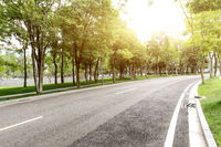 empty asphalt road with green trees