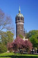 Martin Luther Schlosskirche Tower