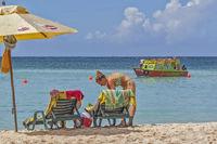 Beach Scene, Pigeon Point, Tobago, West Indies