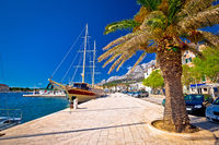 Makarska palm waterfront colorful view
