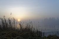 Nebel bei Sonnenuntergang am See